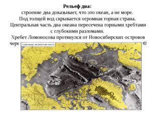 Рельеф дна:  строение дна доказывает, что это океан, а не море.  Под толщей в