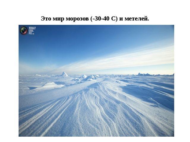 Это мир морозов (-30-40 С) и метелей.