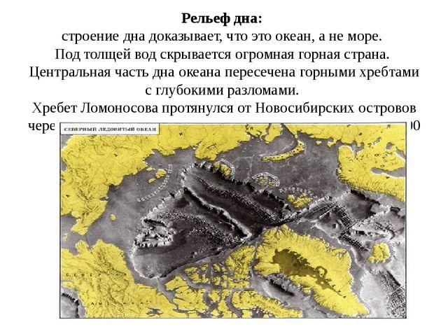Рельеф дна:  строение дна доказывает, что это океан, а не море.  Под толщей в...