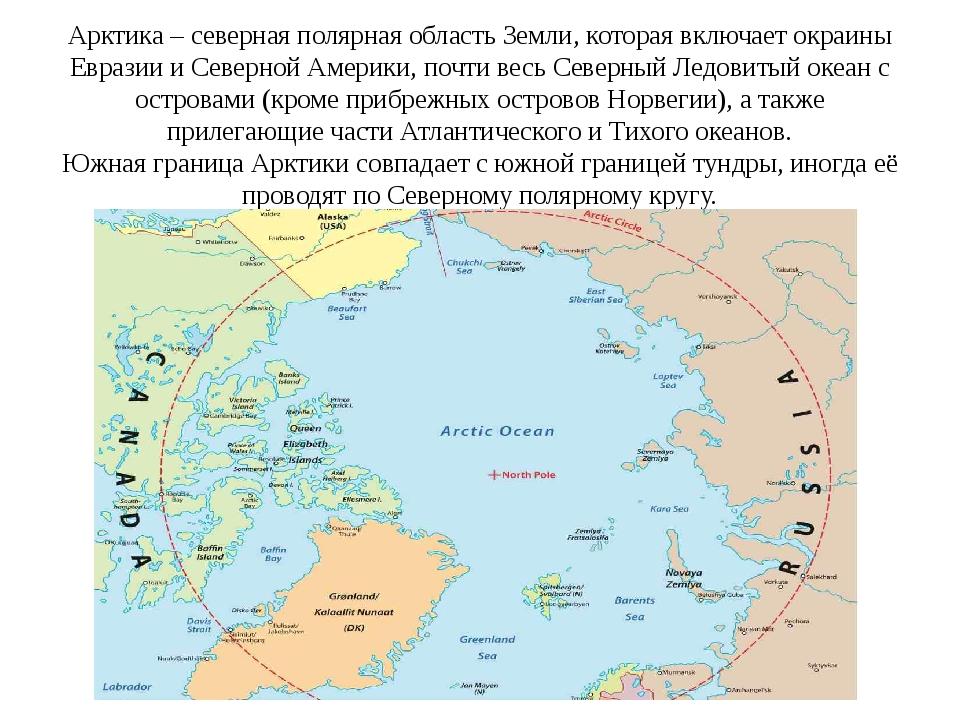 Арктика – северная полярная область Земли, которая включает окраины Евразии и...