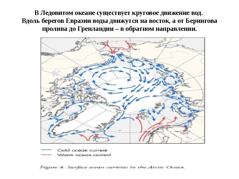 В Ледовитом океане существует круговое движение вод.  Вдоль берегов Евразии в...