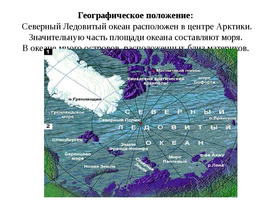 Географическое положение:  Северный Ледовитый океан расположен в центре Аркти...