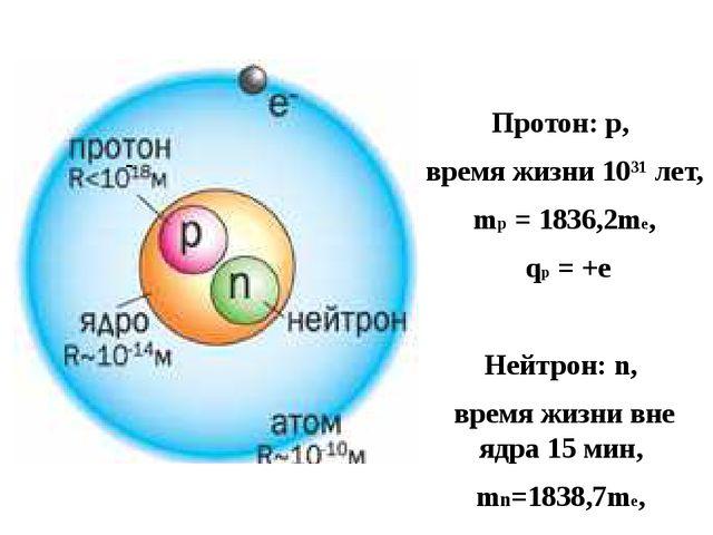 Протон: р, время жизни 10³¹ лет, mp = 1836,2me, qp = +e Нейтрон: n, время жиз...