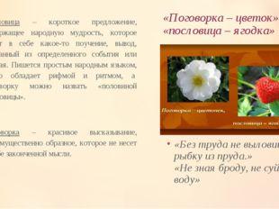 «Поговорка – цветок», «пословица – ягодка» Пословица – короткое предложение,