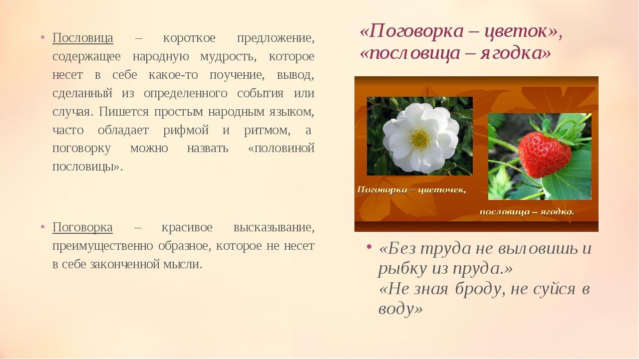 «Поговорка – цветок», «пословица – ягодка» Пословица – короткое предложение,...