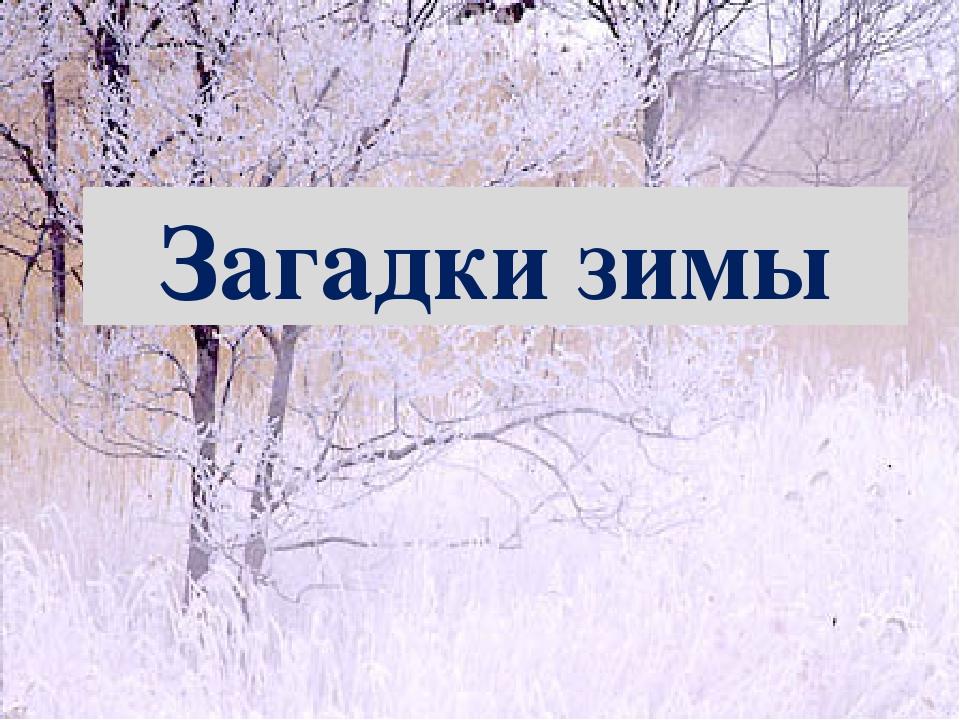 Загадки зимы