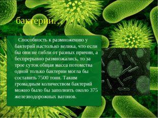 Способность к размножению у бактерий настолько велика, что если бы они не ги