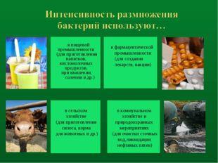 в пищевой промышленности (для приготовления напитков, кисломолочных продукто