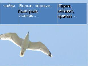 быстрые Парят, летают, кричат чайки Белые, чёрные, быстрые, ловкие… Парят, ле