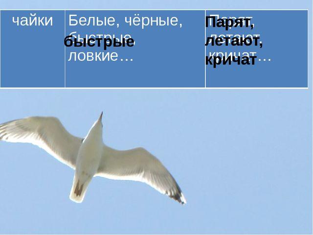 быстрые Парят, летают, кричат чайки Белые, чёрные, быстрые, ловкие… Парят, ле...