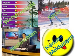 Was sehen Sie am liebsten? Wetterbericht Sport Nachrichten Kuriose Meldungen