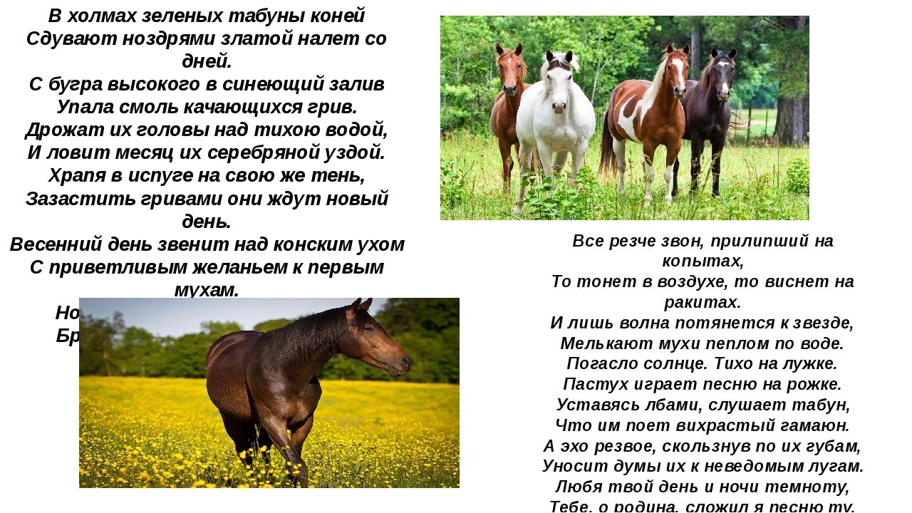 В холмах зеленых табуны коней Сдувают ноздрями златой налет со дней. С бугра...