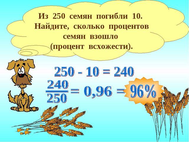 Из 250 семян погибли 10. Найдите, сколько процентов семян взошло (процент всх...