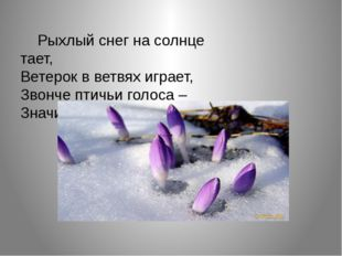 Рыхлый снег на солнце тает, Ветерок в ветвях играет, Звонче птичьи голоса –