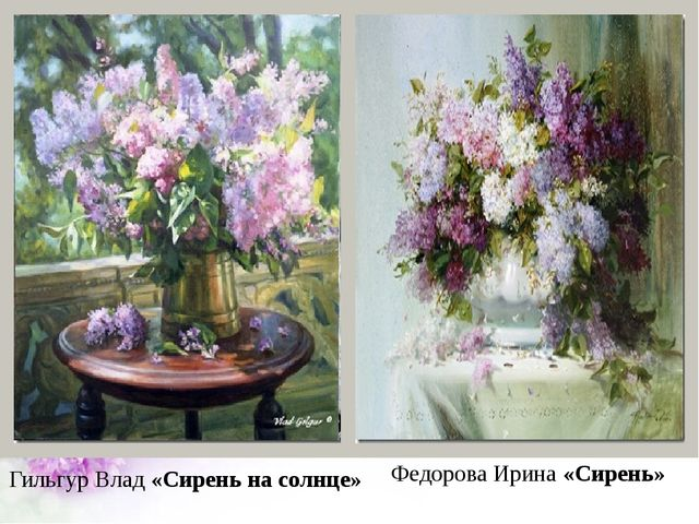 Гильгур Влад «Сирень на солнце» Федорова Ирина «Сирень»