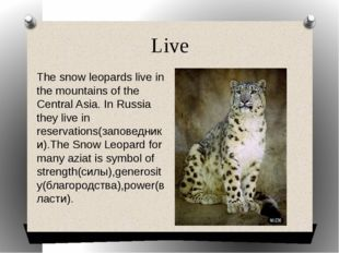 Live The snow leopards live in the mountains of the Central Asia. In Russia t