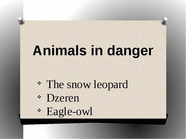 The snow leopard Dzeren Eagle-owl Animals in danger