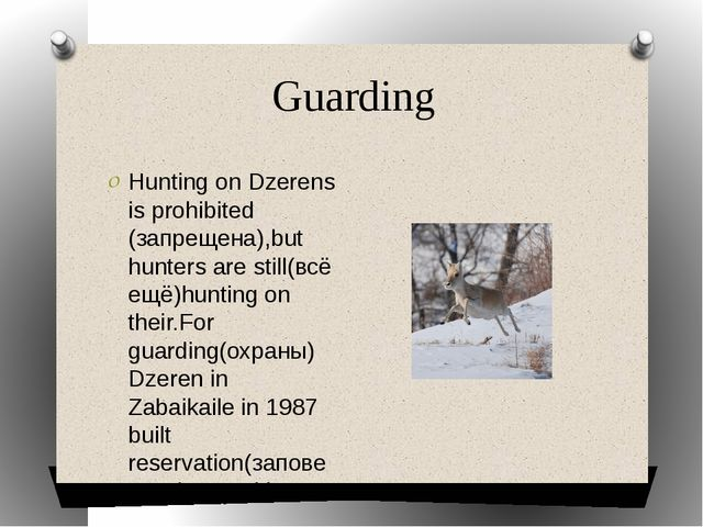 Guarding Hunting on Dzerens is prohibited (запрещена),but hunters are still(в...