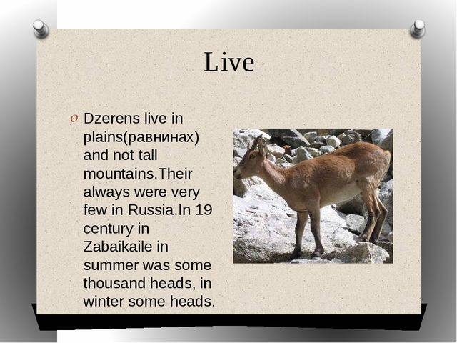 Live Dzerens live in plains(равнинах) and not tall mountains.Their always wer...
