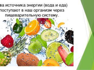 Два источника энергии (вода и еда) поступают в наш организм через пищеварител