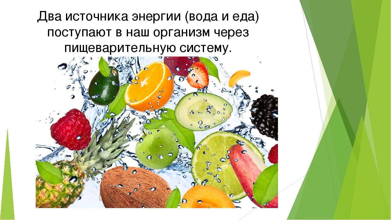 Два источника энергии (вода и еда) поступают в наш организм через пищеварител...
