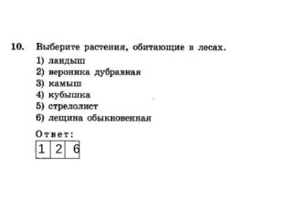 1 2 6