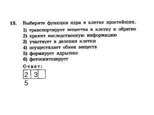 2 3 5