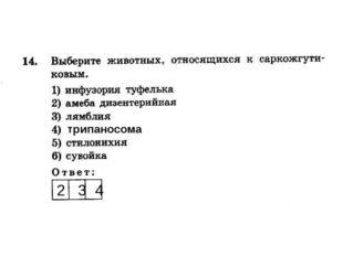 2 3 4 трипаносома
