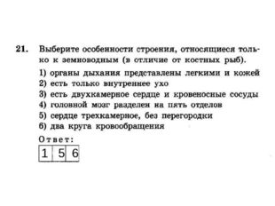 1 5 6