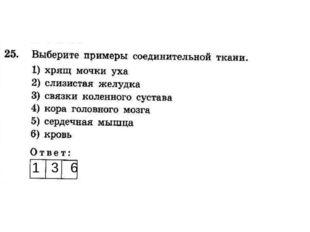 1 3 6