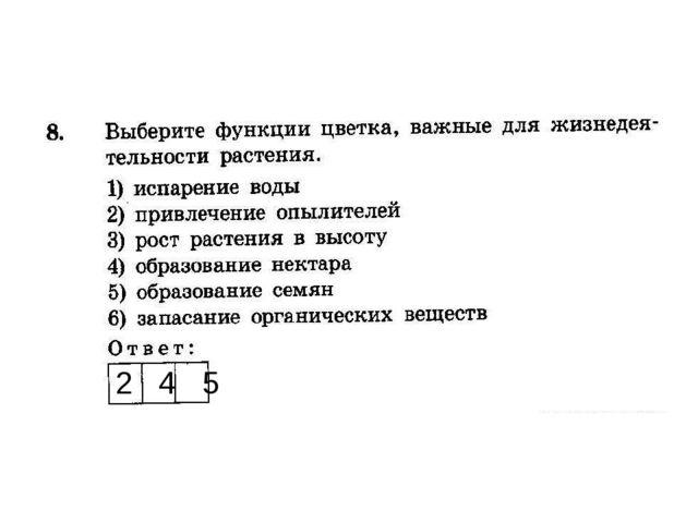 2 4 5