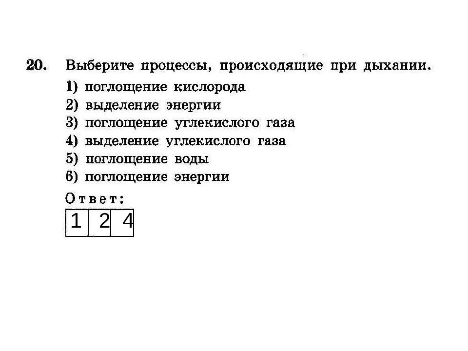1 2 4