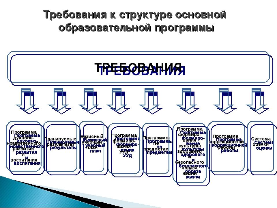 Требования к структуре основной образовательной программы ТРЕБОВАНИЯ Планируе...