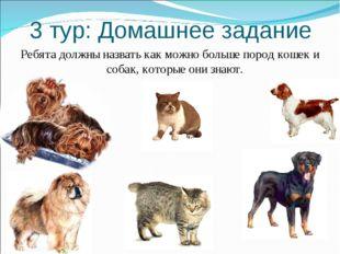3 тур: Домашнее задание Ребята должны назвать как можно больше пород кошек и