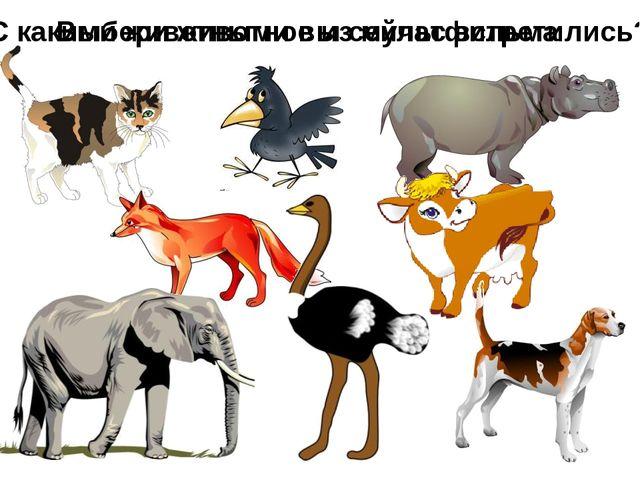 С какими животными вы сейчас встретились? Выбери животное из мультфильма