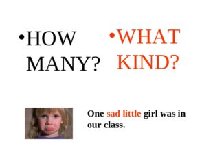 HOW MANY? WHAT KIND? One sad little girl was in our class. One sad little gir