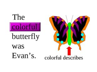 The colorful butterfly was Evan's. colorful describes