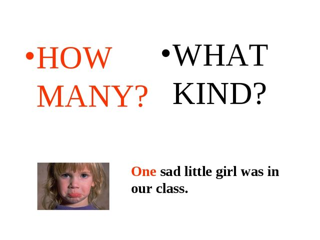 HOW MANY? WHAT KIND? One sad little girl was in our class. One sad little gir...
