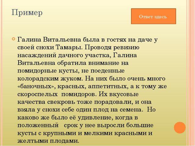 Пример Галина Витальевна была в гостях на даче у своей снохи Тамары. Проводя...