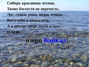 Сибирь красавица лесная, Твоих богатств не перечесть. Лес, сопки, реки, звери