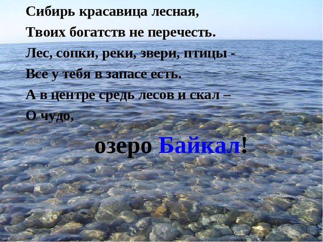 Сибирь красавица лесная, Твоих богатств не перечесть. Лес, сопки, реки, звери...