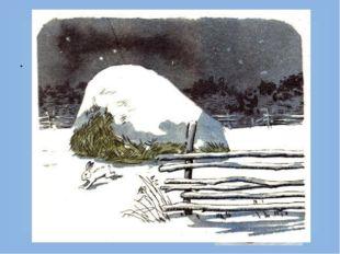 Чем питаются зайцы? Зимой грызут кору разных деревьев, часто осины. В садах п