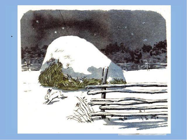 Чем питаются зайцы? Зимой грызут кору разных деревьев, часто осины. В садах п...