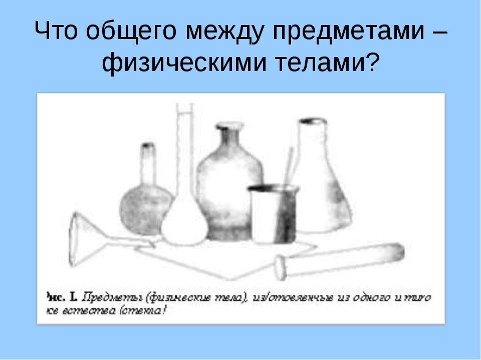 Что общего между предметами – физическими телами?