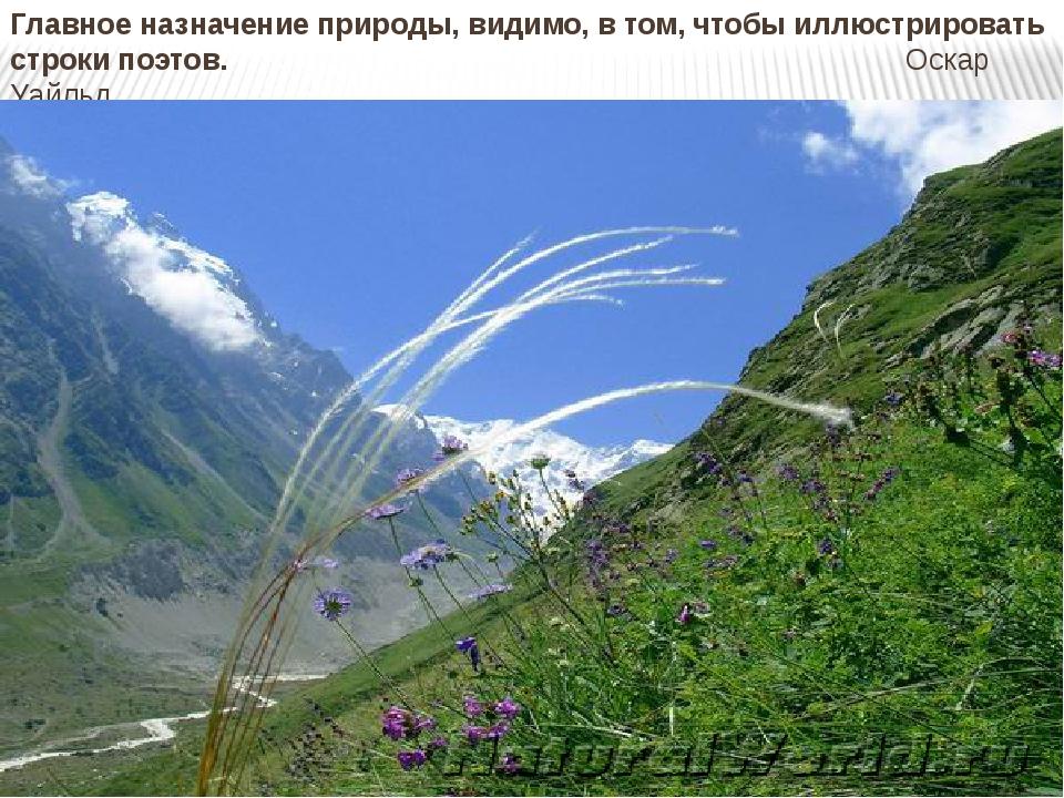 Главное назначение природы, видимо, в том, чтобы иллюстрировать строки поэтов...