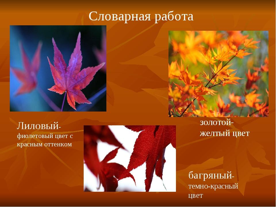 Лиловый-фиолетовый цвет с красным оттенком золотой-желтый цвет багряный-темно...