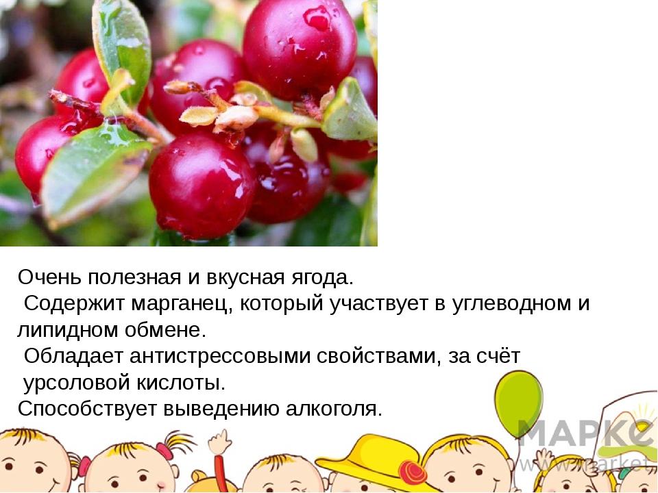 Очень полезная и вкусная ягода. Содержит марганец, который участвует в углево...