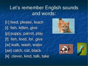 Let's remember English sounds and words: [i:] feed, please, teach [i] fish, k
