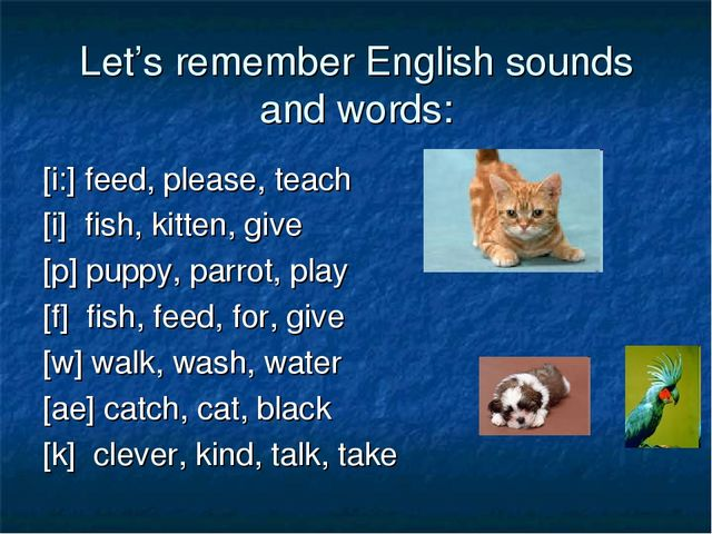 Let's remember English sounds and words: [i:] feed, please, teach [i] fish, k...