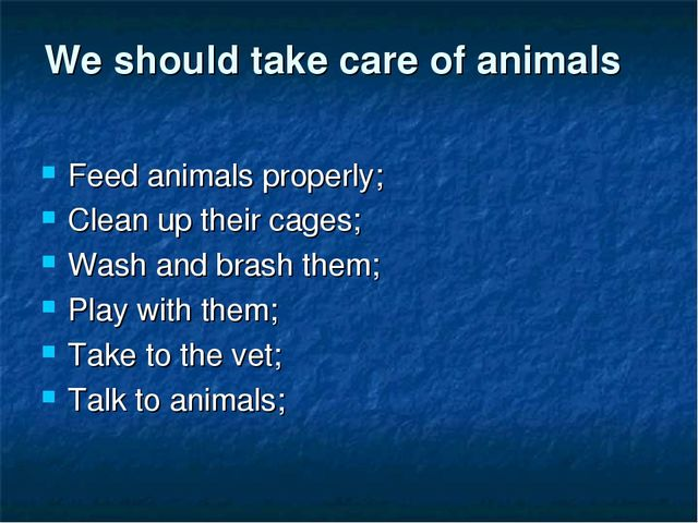 We should take care of animals Feed animals properly; Clean up their cages; W...